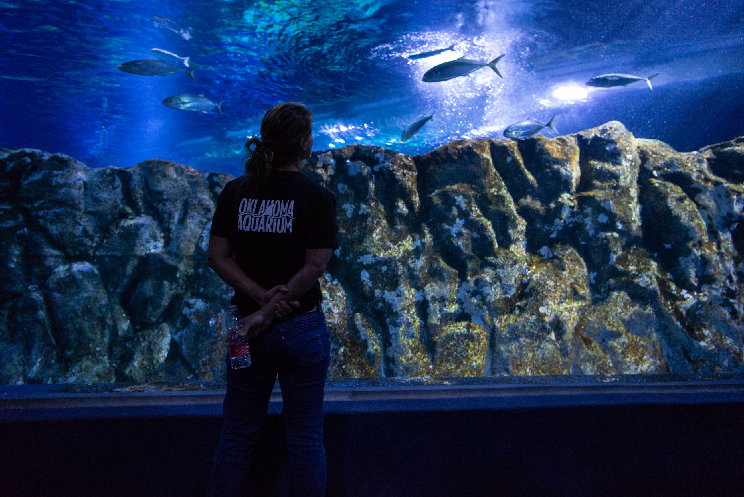 Amy Alexopoulos, Lead Aquarist of Marine Fishes at the Oklahoma Aquarium, looks at the Mediterranean
