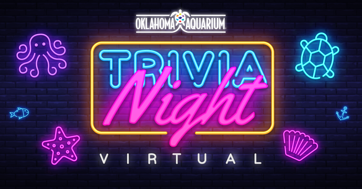 Neon Letters that spell out the words Oklahoma Aquarium Trivia Night Virtual